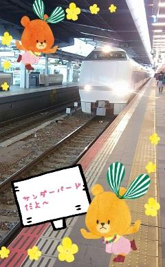 2015-03-23-13-09-40_deco.jpg